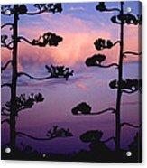 Century Sunset Acrylic Print