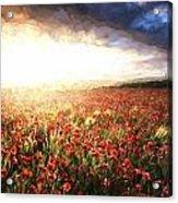 Cezanne Style Digital Painting Stunning Poppy Field Landscape Under Summer Sunset Sky Acrylic Print