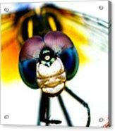 Chakra Warrior Acrylic Print