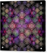 Chalice Cell Rings On Black Dk29 Acrylic Print