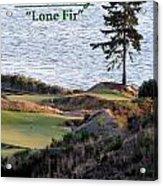 Chambers Bay's Lone Fir - Chambers Bay Golf Course Acrylic Print