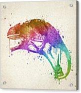 Chameleon Splash Acrylic Print