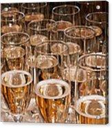 Champagne 02 Acrylic Print