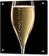 Champagne Glass Xxxl Acrylic Print