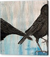 Crow Takes Tea Acrylic Print