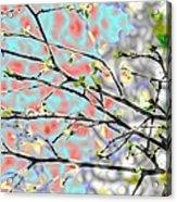 Change To Spring Acrylic Print