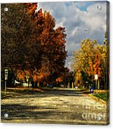Changing To Fall Colors In Dwight Il Acrylic Print