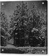 Charcoal Snowfall Acrylic Print