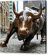 Charging Bull 1 Acrylic Print
