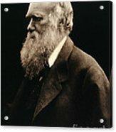 Charles Darwin By Julia Margaret Acrylic Print
