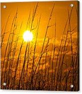 Charleston Beach Sunrise Acrylic Print