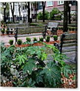 Charleston Waterfront Park Benches Acrylic Print by Carol Groenen