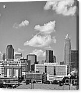 Charlotte Skyline In Black And White Acrylic Print