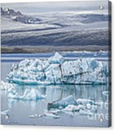 Chasing Ice Acrylic Print