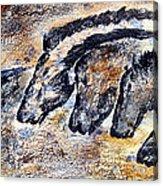 Chauvet Cave Auroch And Horses Acrylic Print
