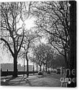 Chelsea Embankment London 2 Uk Acrylic Print