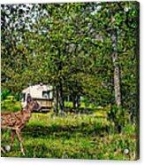 Cherokee Lake Thousand Trails Preserve Acrylic Print