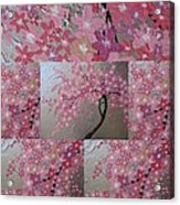 Cherry Blossom Collage Acrylic Print