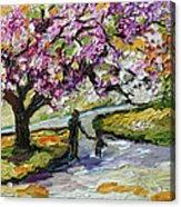 Cherry Blossom Tree Walk In The Park Acrylic Print