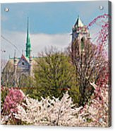 Cherry Blossoms And The Sacred Heart Acrylic Print