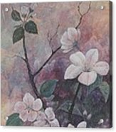 Cherry Blossoms In The Cosmos Acrylic Print by Sandy Clift