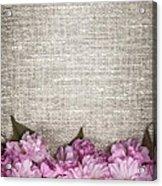 Cherry Blossoms On Linen  Acrylic Print by Elena Elisseeva