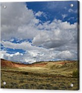 Cherry Springs Area 1 Acrylic Print by Roger Snyder