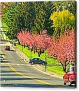 Cherry Sundae Acrylic Print