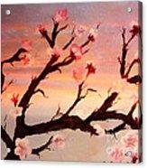 Cherry Tree Expresssive Brushstrokes Acrylic Print