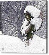 Cherub Of The Blizzard Acrylic Print by Teak  Bird