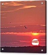 Chesapeake Sunset 1 Acrylic Print