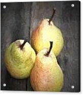Chiaroscuro Style Image Fresh Juicy Pears In Rustic Wooden Setting Acrylic Print