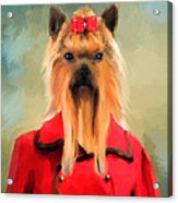 Chic Yorkshire Terrier Acrylic Print