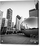 Chicago Bean And Chicago Skyline In Black And White Acrylic Print