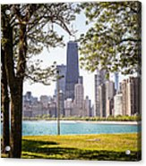 Chicago Skyline And Hancock Building Through Trees Acrylic Print