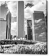 Chicago Skyline Lurie Garden Black And White Picture Acrylic Print