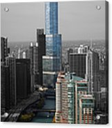 Chicago Trump Tower Blue Selective Coloring Acrylic Print