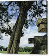 Chichen Itza Scene Acrylic Print by Steve Winter