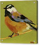 Chickadee Iv Acrylic Print