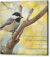 Chickadee With His Prize And Verse Acrylic Print