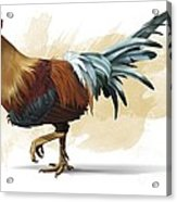 Chickenosaurus, Artwork Acrylic Print