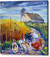 Chickens In The Cornfield Acrylic Print