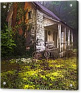 Childhood Dreams Acrylic Print by Debra and Dave Vanderlaan