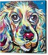 Chili Dog Acrylic Print