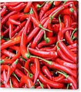 Chili Acrylic Print