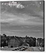 Chillin On A Dirt Road Acrylic Print by Anthony Thomas