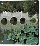 Chinese Garden Scene Acrylic Print
