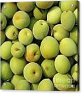 Chinese Green Plums Acrylic Print by Yali Shi