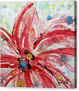 Chinese Red Flower Acrylic Print