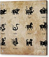 Chinese Zodiac Acrylic Print by Delphimages Photo Creations